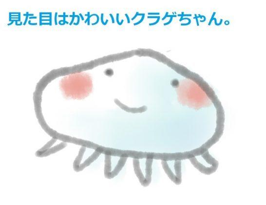 お盆とクラゲ